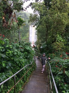 Karly crossing a foot bridge towards Akaka Falls, Akaka State Park