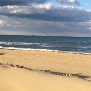 NC coast image