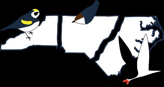 Birding trail website logo